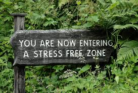 stress free performance appraisals